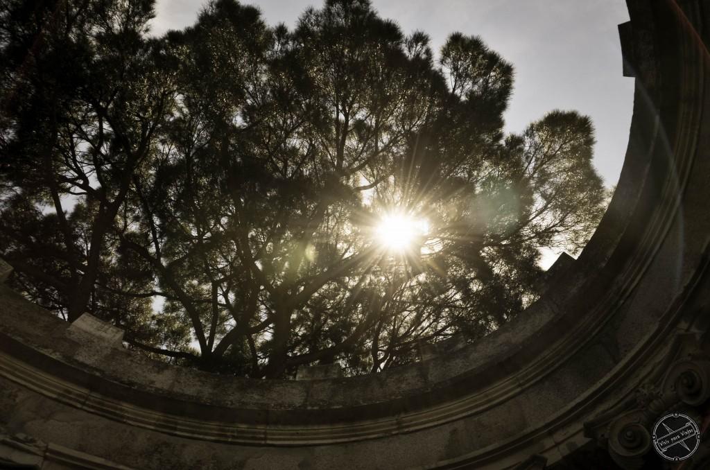 Jardin El Capricho-3389
