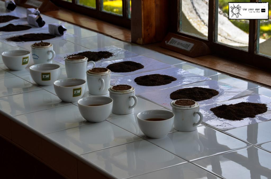 Los efectos secundarios del té en Sri Lanka