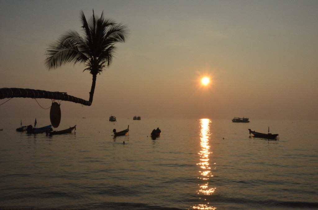 koh tao for beginners-3976