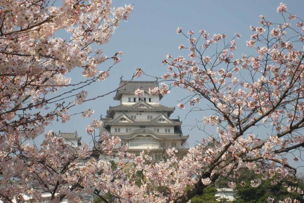 Himeji-Castle-3199