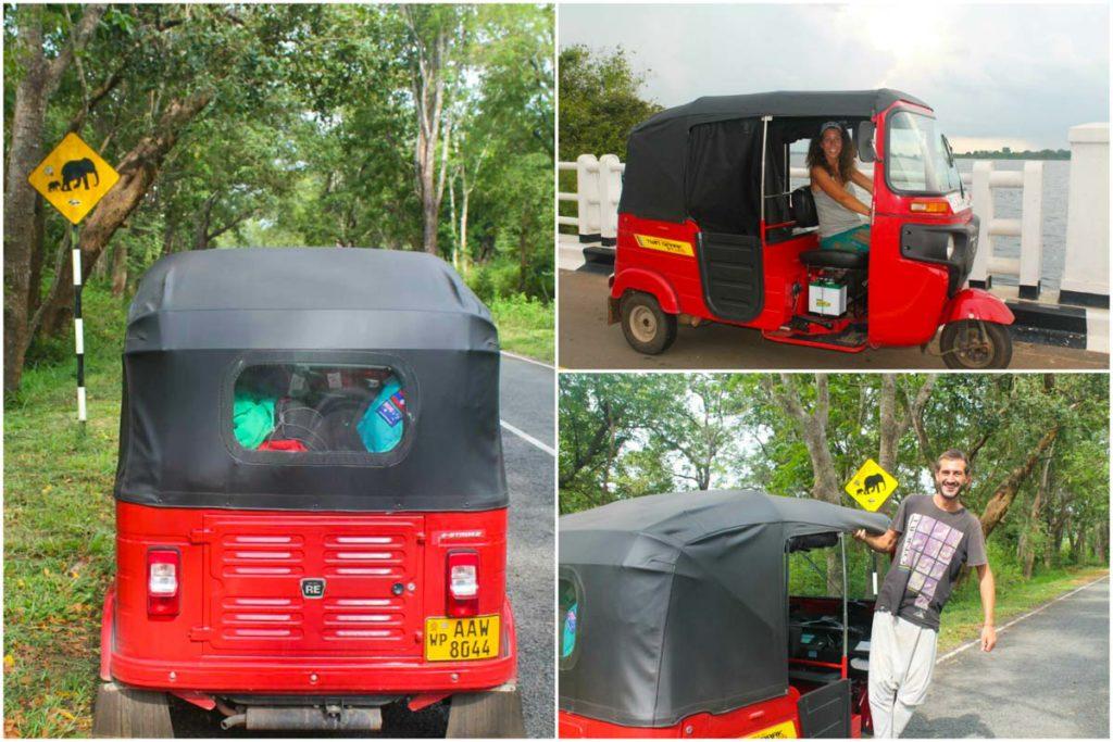Alquilar Tuk Tuk Sri Lanka--4