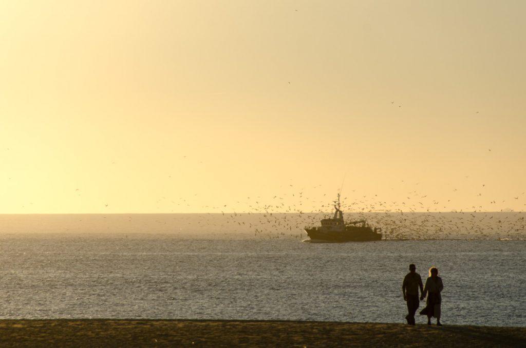 barco pescando en nazare