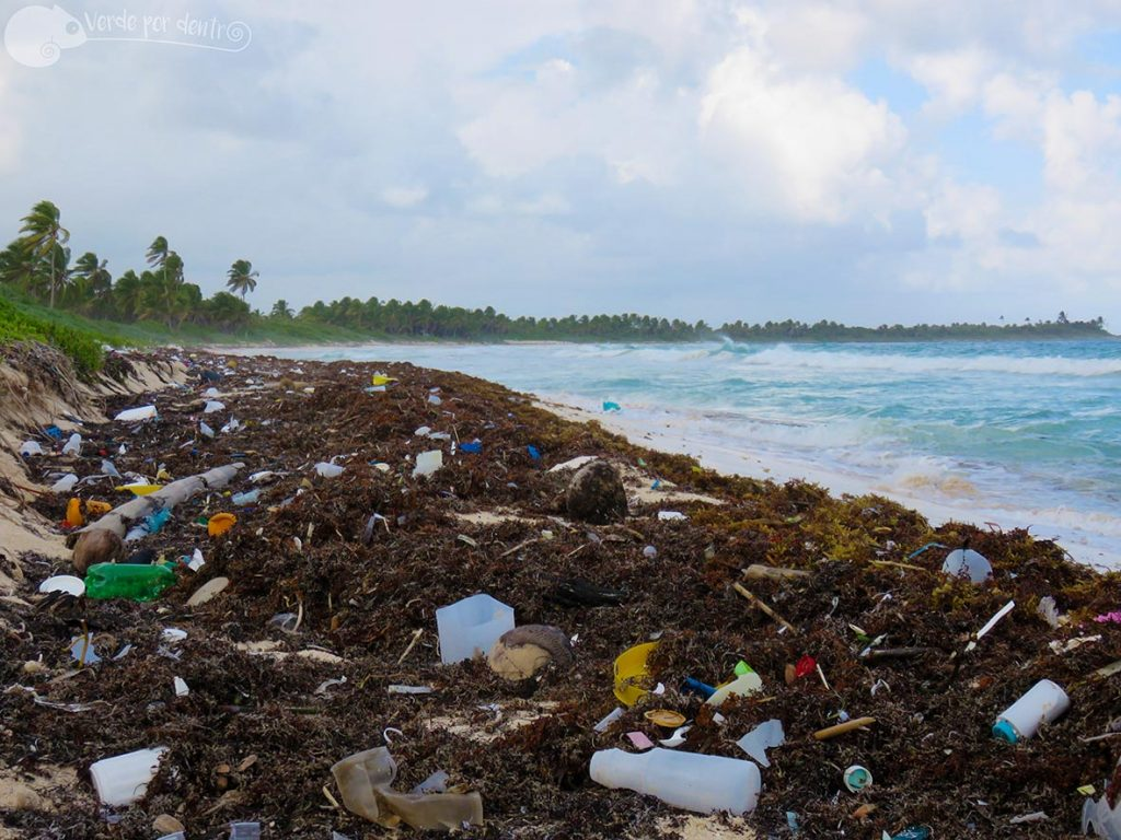 Foto de playa con plástico de verde por dentro